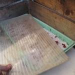 Plastplata lögð yfir bakkann